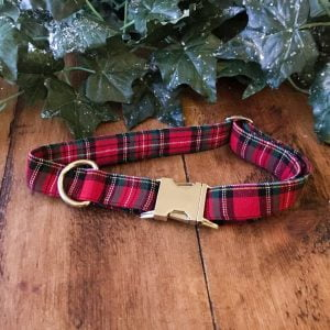 Stewart Tartan Dog Collar handmade by Ooh Betty